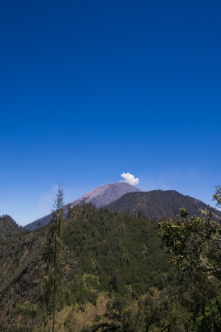 Mount Semeru gives off an eruption every 40 minutes or so